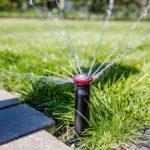 Gleichmäßige Bewässerung für sattes Grün